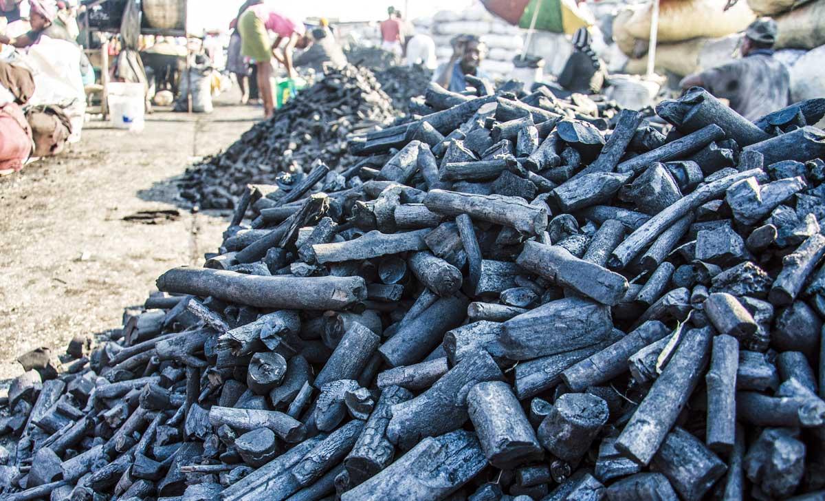 LE CHARBON DE BOIS, responsable majeur du déboisement en Haïti, peut être remplacé pour la cuisson.