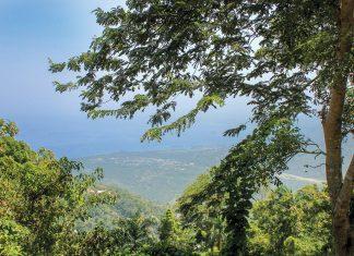 A VALLUE, les montagnes sont encore protégés par des arbres géants et une végétation dense PHOTOGRAPHIES PAR RTJ / CHALLENGES