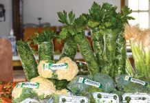 DES ZONES EN haute altitude dans le grand Sud peuvent produire des fruits et légumes en quantité